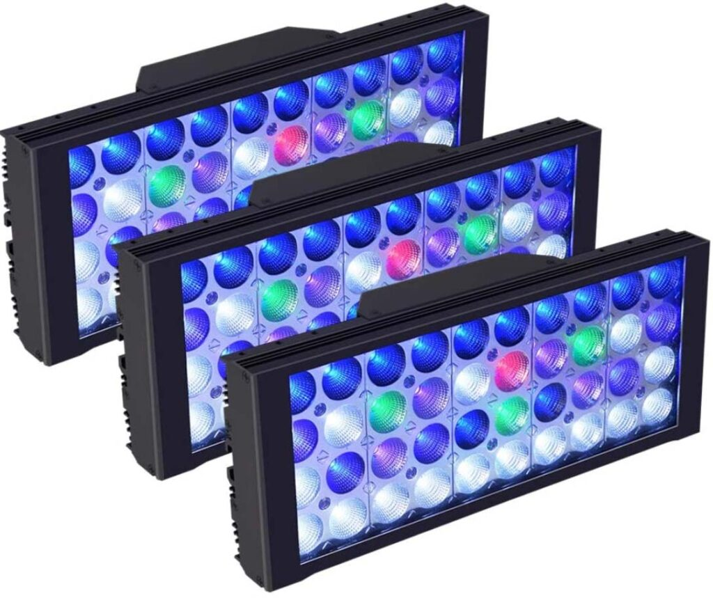 reef aquarium led colors